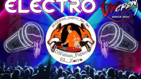 @DjFabian_Pupiro_The_Fox - Aleteo Ft. Electro Mix