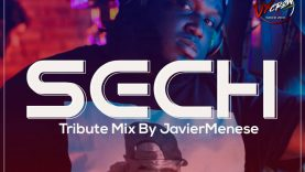 @DjJaviermenesepty - Sech The Mixtape