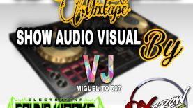 @Miguel.pineda_20 (Vj Miguelito 507) The Model Dj - Lo Del Momento Mixtape ( VIDEO MIX )